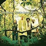 Derek Trucks Band Joyful Noise