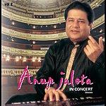 Anup Jalota In Concert, Vol.2 (Live)