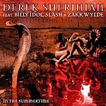 Derek Sherinian In The Summertime/Man With No Name