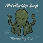 Fat Freddy's Drop Wandering Eye (4-Track Single)