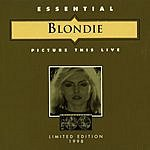 Blondie Picture This (Live)