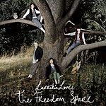 Larrikin Love The Freedom Spark