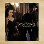 Evanescence Call Me When You're Sober (Single)