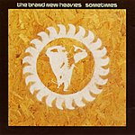 The Brand New Heavies Sometimes (4-Track Maxi-Single)
