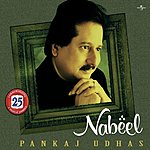 Pankaj Udhas Nabeel: The Finest