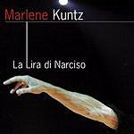 Marlene Kuntz La Lira Di Narciso (Live)