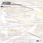 Pylon The Standard Fight