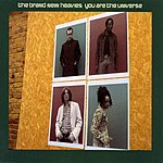 The Brand New Heavies You Are The Universe (2-Track Single)