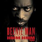 Beenie Man Hmm Hmm (Remix) (Single)