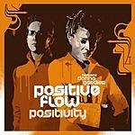 Positive Flow Positivity