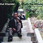 Cut Chemist What's The Altitude (4-Track Maxi-Single)