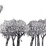 The Ladybug Transistor Here Comes The Rain EP