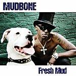 Mudbone Fresh Mud