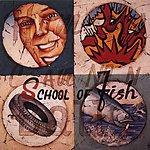 School Of Fish Human Cannonball