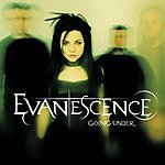 Evanescence Going Under/Heart Shaped Box