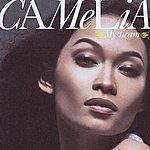 Camelia Mysticam