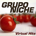 Grupo Niche Virtual Hits