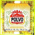 Polvo Celebrate The New Dark Age EP