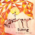 Tunng It's Because…We've Got Hair (2-Track Single)