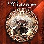 12 Gauge 12 Gauge