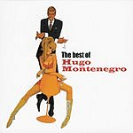 Hugo Montenegro & His Orchestra The Best Of