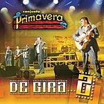 Conjunto Primavera De Gira 2 (Live)
