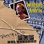 Wolfgang Ambros Bernie's Pop Collection