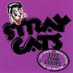 Stray Cats Live From Europe: Helsinki July 9, 2004