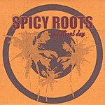 Spicy Roots Brilliant Day/D.I.S.C.O