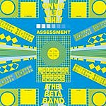 The Beta Band Assessment (3-Track Maxi-Single)