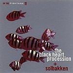 The Blackheart Procession In The Fishtank 11