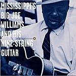 Big Joe Williams Mississippi's Big Joe Williams And His Nine-String Guitar