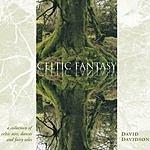 David Davidson Celtic Fantasy