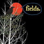 Fields If You Fail We All Fail/How Are You Now?