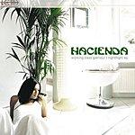 Hacienda Working Class Glamour / Nightflight (Single)