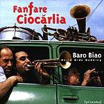 Fanfare Ciocarlia Baro Biao: World Wide Wedding