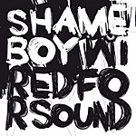 Shameboy Wired For Sound (4-Track Maxi-Single)
