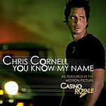 Chris Cornell You Know My Name (Single)