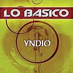 Yndio Lo Basico
