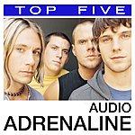Audio Adrenaline Top 5 Hits: Audio Adrenaline (5-Track Maxi-Single)