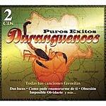 Los Grandes de Durango Puros Exitos Duranguences
