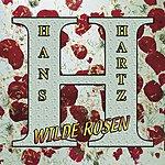 Hans Hartz Wilde Rosen (Single)