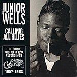 Junior Wells Calling All Blues