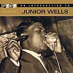 Junior Wells An Introduction To Junior Wells