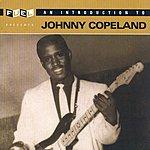 Johnny Copeland An Introduction To Johnny Copeland