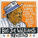 Big Joe Williams Big Joe Williams Revisited