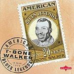 T-Bone Walker American Blues Legend