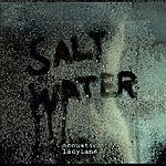 Acoustic Ladyland Saltwater (2-Track Single)