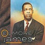 Elmore James Dust My Broom (CD1)