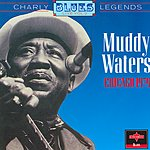 Muddy Waters Chicago, 1979 (Live)